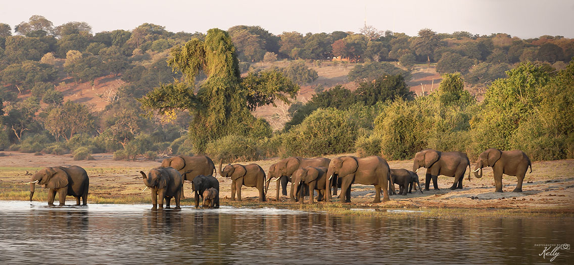 mooiste nationale parken afrika