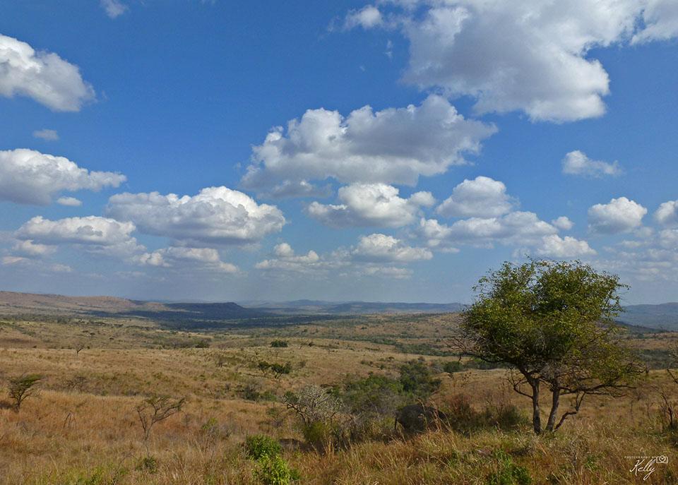 Hluhluwe Nationaal Park