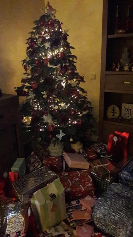 dutchies diary december 2018