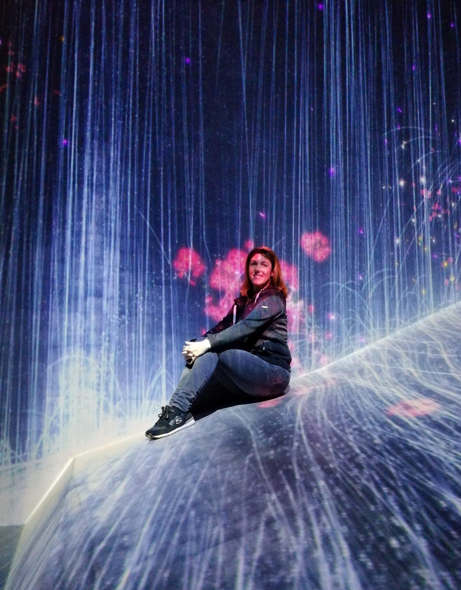 digital art museum teamlab borderless