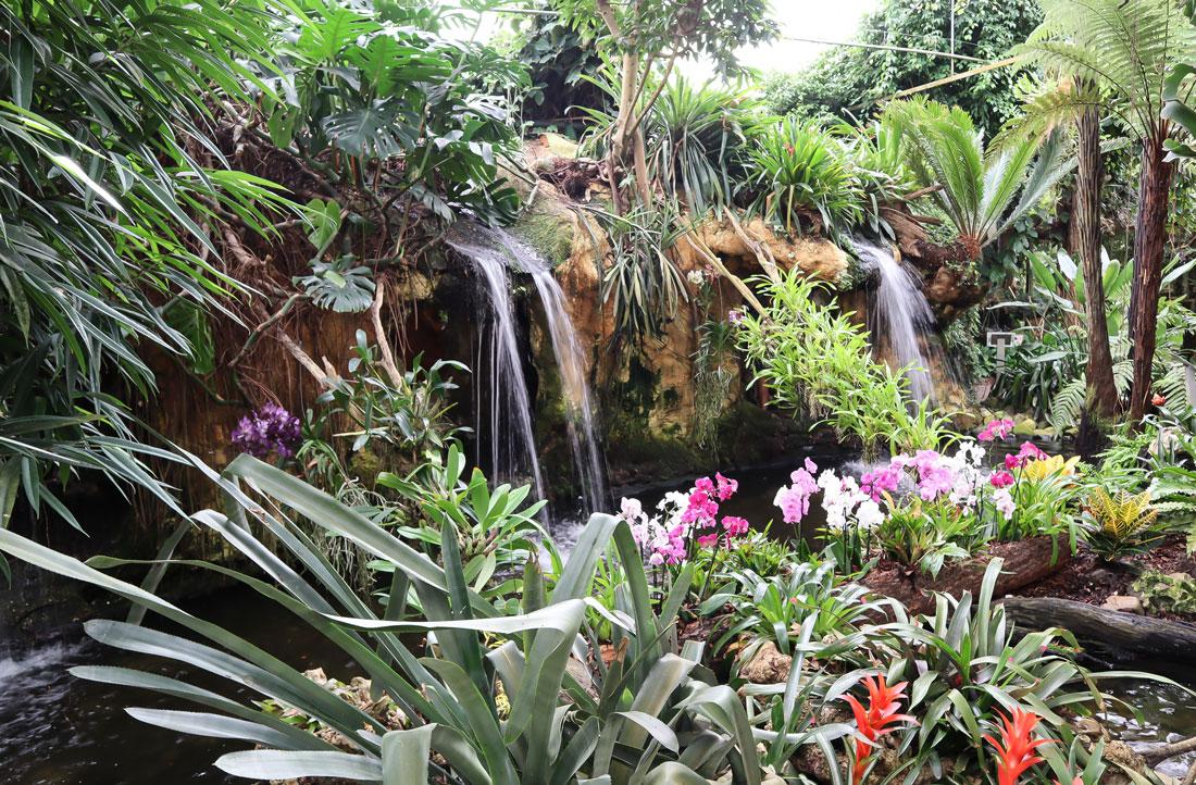 Orchideeënhoeve