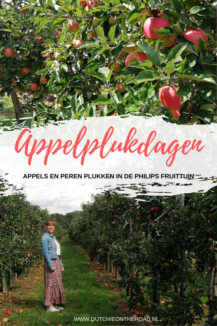 appelplukdagen philips fruittuin
