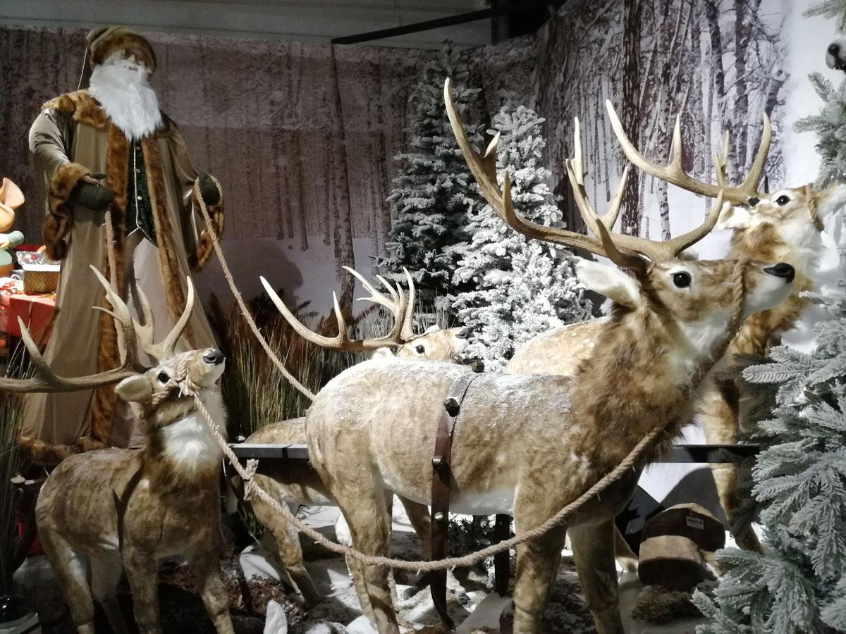 kerstshows bezoeken