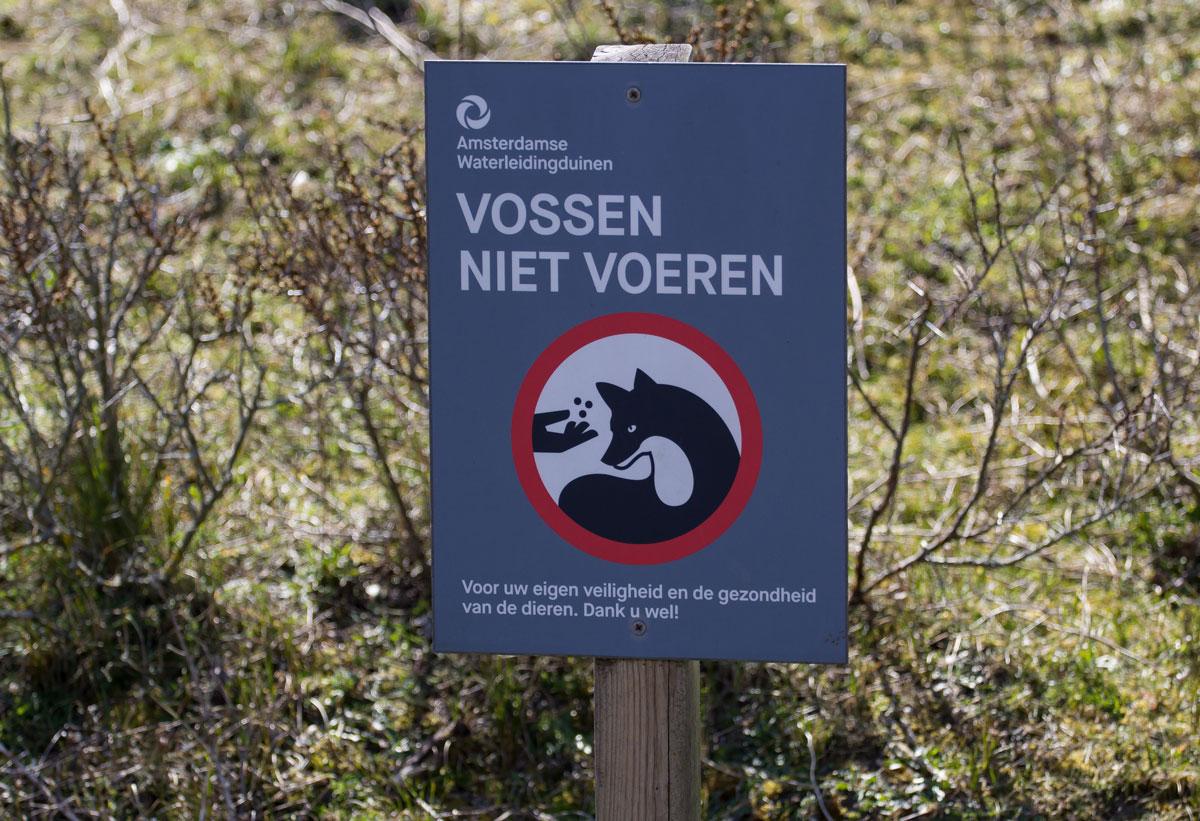 Vossen niet voeren
