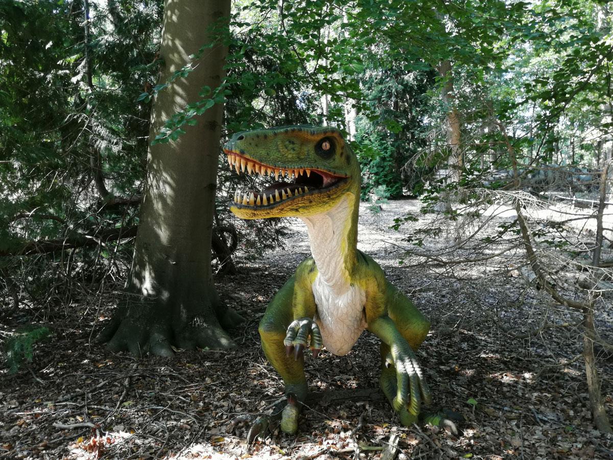 Dinobos